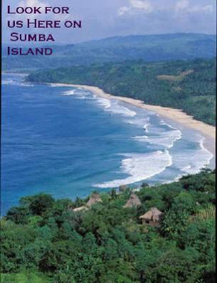 sumba-island.jpg